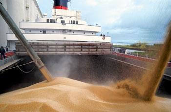 Експортні ціни на зернові та олійні: Щотижневий бюлетень, 21.03.2019