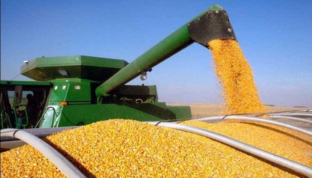 62% импортной кукурузы в Евросоюзе из Украины